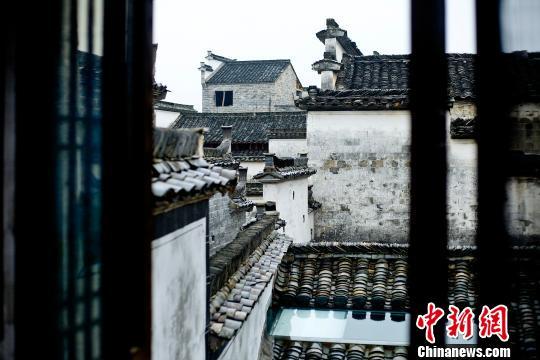 """安徽黄山:超10万农民吃"""""""