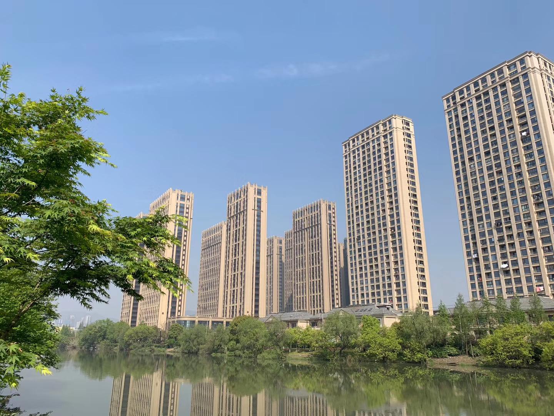 杭州楼市半年报:新房成