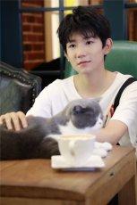 王源南锣鼓巷撸猫,温柔