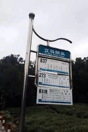 看着杭州的路名,游客羡慕哭:杭州人也太浪漫