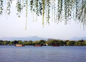 年复一年,来杭州赴一场